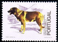 Portugal 1981 50th anniversary of the Portuguese Kennel Club f