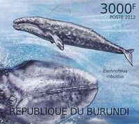 Burundi 2012 Protection of Nature - Save the Whales l