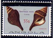 Angola 1981 Sea Shells Overprinted l