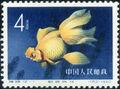 China (People's Republic) 1960 Chinese Goldfish (Carassius auratus auratus) a.jpg