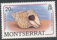 Montserrat 1988 Sea Shells d