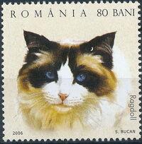 Romania 2006 Cats d