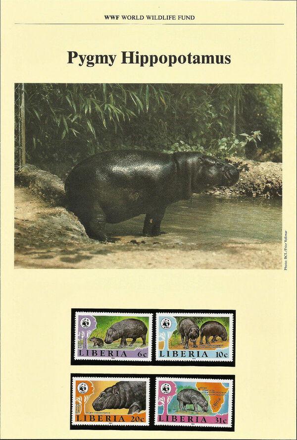 Liberia 1984 WWF - Pygmy hippopotamus WWFIOPa