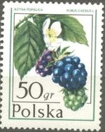 Poland 1977 Forest Fruits a
