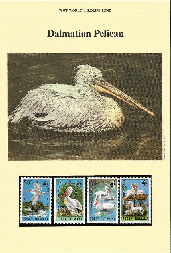 Romania 1984 WWF - Pelicans of the Danube Delta WWFIOPa