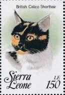 Sierra Leone 1993 Cats of the World o