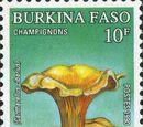 Burkina Faso 1990 Mushrooms