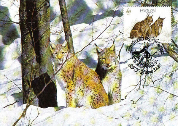 Portugal 1988 WWF Iberian Lynx (Lynx pardina) MCc