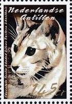 Netherlands Antilles 2003 Cats j