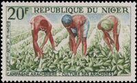 Niger 1963 Niger's Peanut Industry a