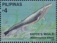 Philippines 1998 Marine Mammals Found in Philipines Waters t