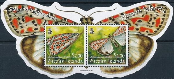 Pitcairn Islands 2007 Salt and Pepper Moth SSa