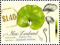 New Zealand 2013 New Zealand Native Ferns b