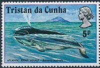 Tristan da Cunha 1975 Whales c