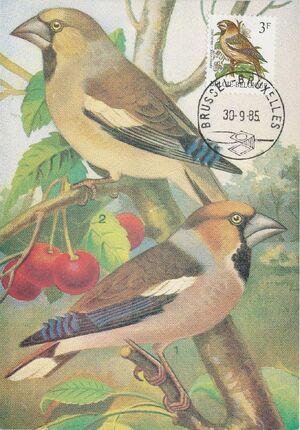 Belgium 1985 Birds MCa