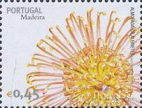 Madeira 2006 Madeira Flowers h