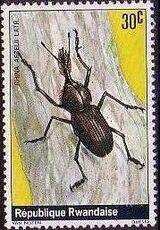 Rwanda 1978 Beetles c