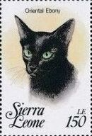 Sierra Leone 1993 Cats of the World m