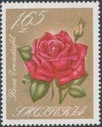 Albania 1967 Roses i