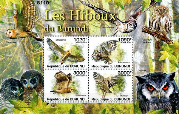 Burundi 2011 Owls of Burundi MSa