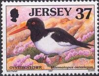 Jersey 1997 Seabirds and waders f
