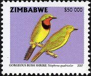 Zimbabwe 2007 Birds from Zimbabwe i