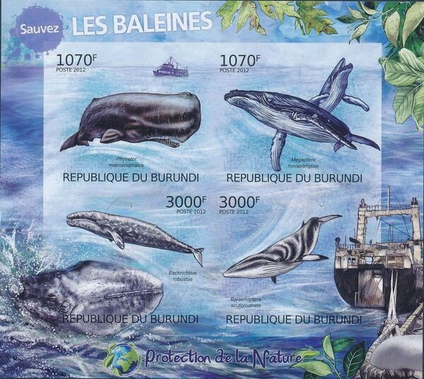 Burundi 2012 Protection of Nature - Save the Whales b