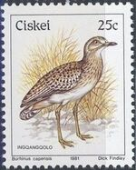 Ciskei 1981 Definitive - Birds m