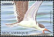 Mozambique 2002 Sea Birds of the World s