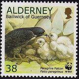 Alderney 2000 WWF Peregrine Falcon d