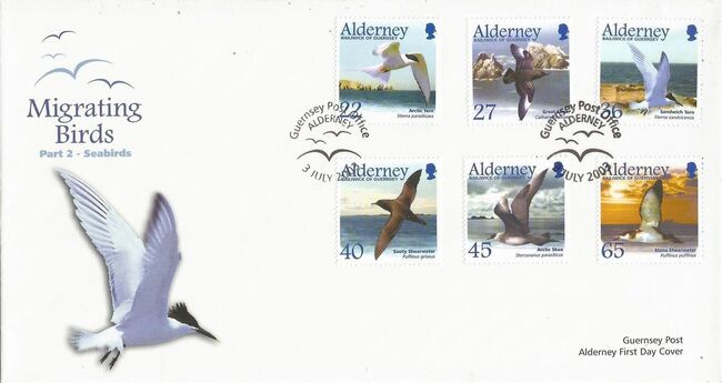 Alderney 2003 Migrating Birds Part 2 Seabirds h