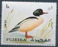 Fujeira 1971 European birds c