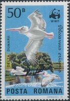 Romania 1984 WWF - Pelicans of the Danube Delta a