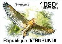Burundi 2011 Owls of Burundi e
