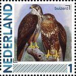 Netherlands 2011 Birds in Netherlands a8