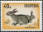 Albania 1967 Hares and Rabbits e
