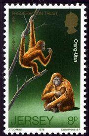 Jersey 1979 Jersey Wildlife Preservation Trust b