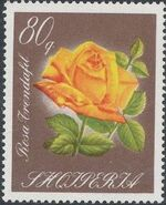 Albania 1967 Roses h