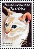 Netherlands Antilles 2003 Cats f