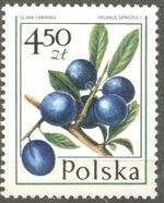 Poland 1977 Forest Fruits f