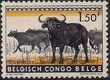 Belgian Congo 1959 Animals f
