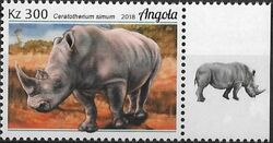 Angola 2018 Wildlife of Angola - Rhinos a