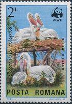 Romania 1984 WWF - Pelicans of the Danube Delta d