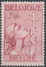 Belgium 1933 Anti Tuberculosis - Lorraine Cross e