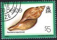 Belize 1980 Shells and Sea Snails p