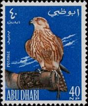 Abu Dhabi 1965 Falconry b