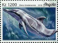 Angola 2018 Wildlife of Angola - Dolphins e
