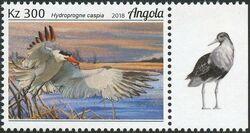 Angola 2018 Wildlife of Angola - Water Birds b