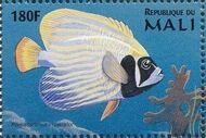 Mali 1997 Marine Life m