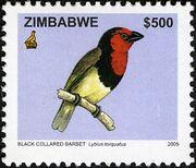 Zimbabwe 2005 Birds from Zimbabwe a